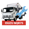 isuzu nqr75